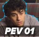 PEVs 01
